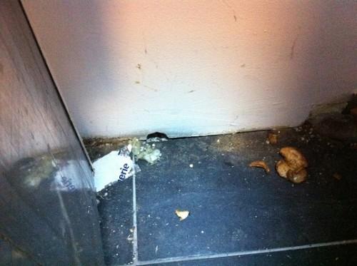 een gat in de muur genaagd door muizen in diemen